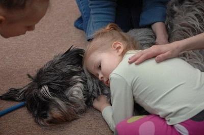 Собаки-терапевты борются за возможность помогать людям